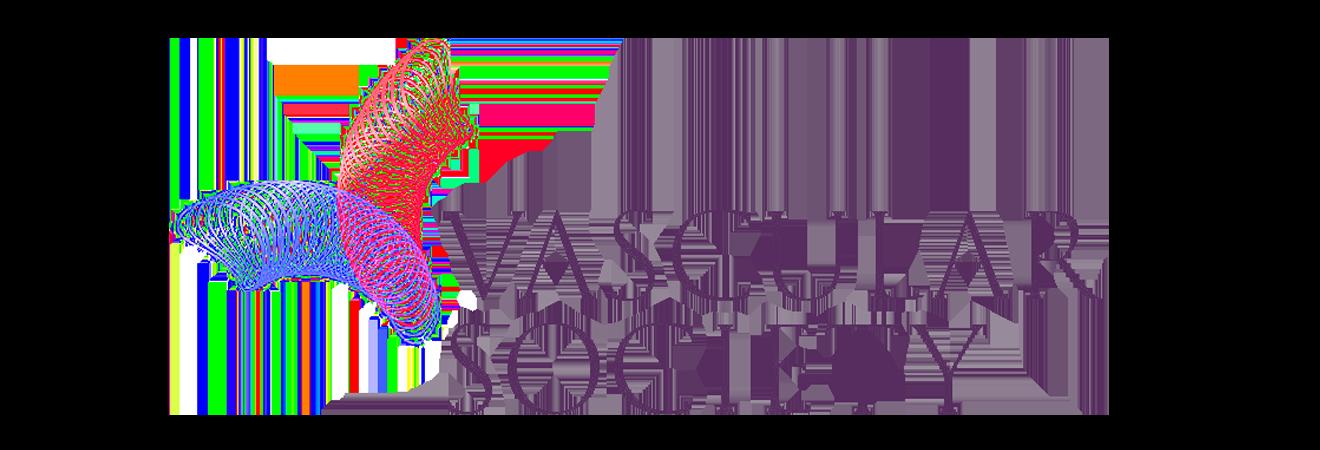 VS vascular society logo