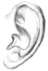 ear-drawing-the-private-clinic
